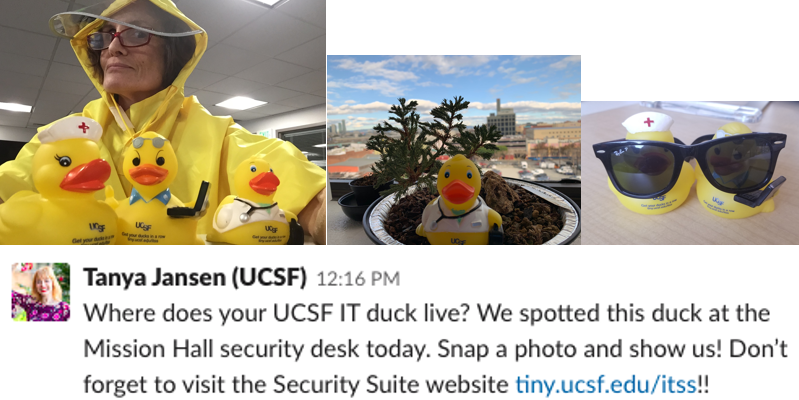 "Examples of UCSF IT Security ""Get Your Ducks In A Row"" campaign"