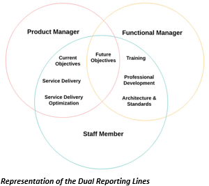 Representation of the Dual Reporting Lines