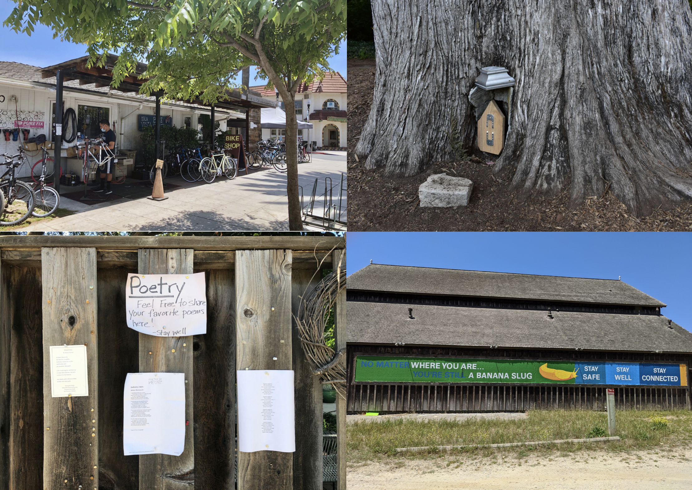 Photo credit (from left to right): Bike Shop (Kaitlin Breitag – UCSB), Fairy Door (Yvonne Tevis – UCOP), Free Poetry (Chasiri Sherron – UCOP), Banana Slugs (Lisa Bono – UCSC)
