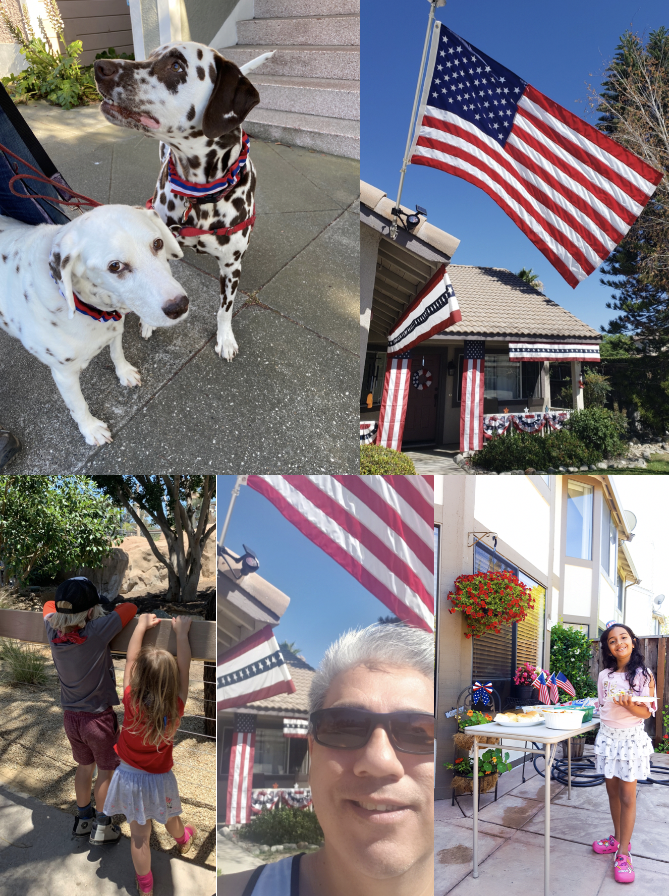 Independence Day Photo Collage: dogs, decorations and people.
