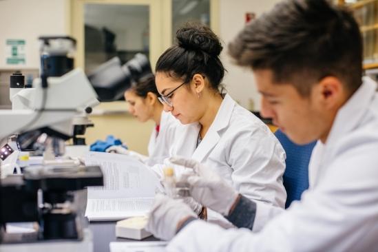 Graduate STEM students in a UCSB Lab