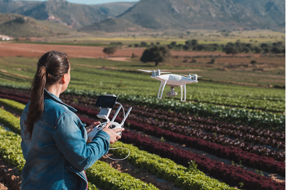 A woman flies a drone over a field